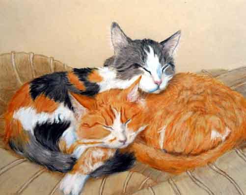 Custom Cats Portrait Drawing