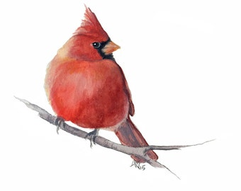 Card with envelope - Cardinal - red bird  - print of original watercolor