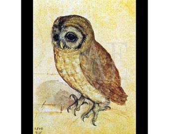 PR-101 Artistic Ephemera Print ~ One 8x10 or Two 5x7s ~ Albrecht Durer 'Young Owl' c. 1514