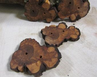 4 Gorgeous Sunburst Juniper Wooden buttons- (3007)