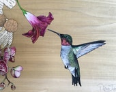 The Hummingbird and His Flowers - A Large Painting
