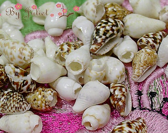 Trim Seashell Bead Cute Sea Natural Shells Drill 100 Piece Mix Lot Tiny Conch Set Assorted Assortment Color Mixed Collection Craft Pack Kit