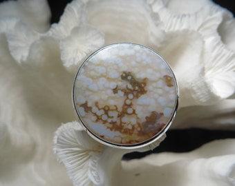 Large Ocean Jasper Ring Size 9