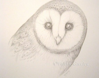 Original art silverpoint drawing of a Barn Owl