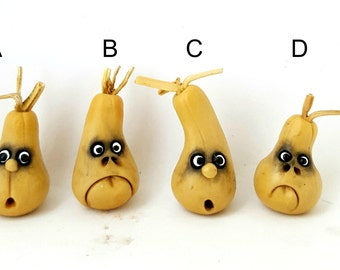 Fantasy vegetables with faces - PEAR GOURD