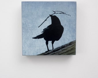 Nest Building Crow - Ready to Hang Wooden Panel -  Fine Art Image Collection on  5-inch Square, Birch Panel