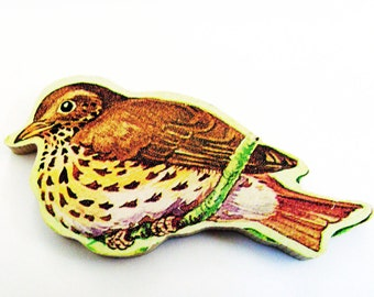 Thrush Brooch - Pin / Upcycled 1960s Hand Cut Wood Puzzle Pieces / Brown Feathered Bird Wood Pin & Bird Name Pin / Unique Gift Under 50