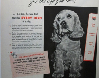 "Pets ... 110  ""Gaines  Dog Food "" Ad  -  December 1947"