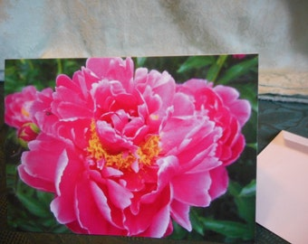 Greeting Card ... Birthday greeting, or Blank inside, Pink Peony note card, all occasion card, flower ... #9