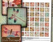 Dragonflies Digital Collage Sheet 1x1 Inch Squares for Pendants, Bezel Settings, Decoupage Paper, Printable Images, Digital Downloads