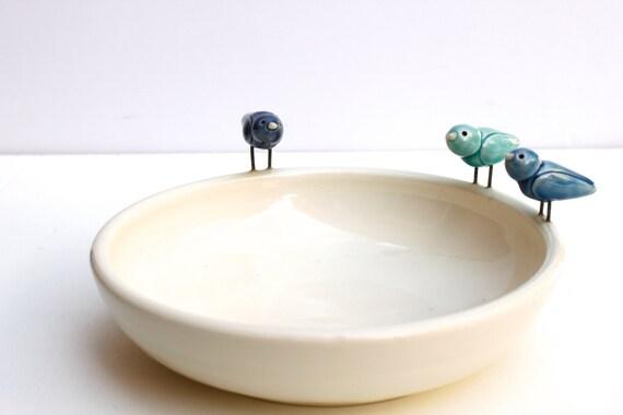 blue birds bowl