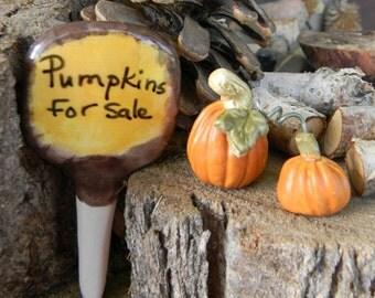 Miniature Fairy Garden Sign dollhouse Pumpkin for sale sign Miniature garden decoration
