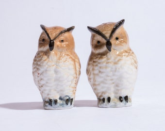 Ceramic Owl Salt and Pepper Shakers