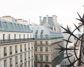 Paris Photography, Morning View At the Louvre, France, Paris Architecture, french home decor, Parisian, Haussmann apartments