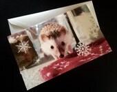 Holiday Hedgehog Card - Charitable Item