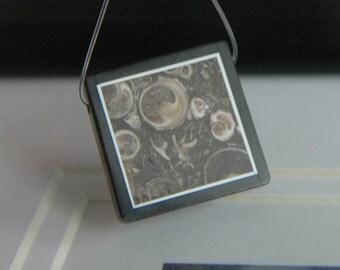 Turritella Fossil Agate, Obsidian Intarsia Pendant