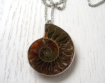 SALE - Chocolate Amber Brown Ammonite Fossil Pendant