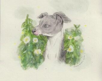 Ghosty Greyhound... Original painting