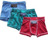 Boys Boxer Briefs - 3 Pack (Red, Blue & Teal Dinos)