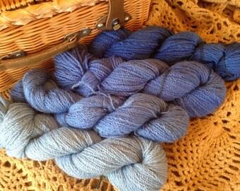 Corriedale Wool Yarn in Blues