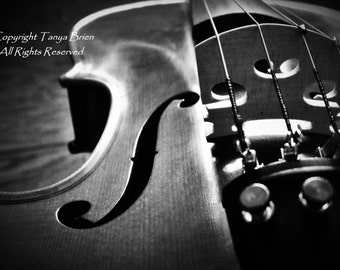 Violin Still Life, Sensual, Black and White, Instrument, Music, Modern Wall Art, Elegant, Artistic Photograph, Home Decor
