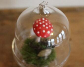 Mini Vintage Toadstool Mushroom Terrarium