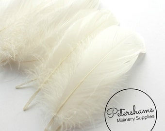 Loose Goose Nagorie Feathers for Millinery and Hat Trimming - Ivory