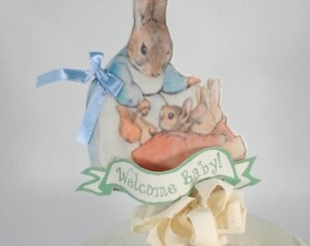 Shabby Chic Peter Rabbit cake topper, fabric Peter Rabbit baby shower party decoration L040