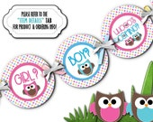 Baby Gender Reveal Party Banner, Party Bunting, Baby Shower Decoration, Photo Prop, Pink, Blue, Baby Owls