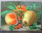 Antique Lithograph, color print, vintage fruit print, pears apple art print, to frame