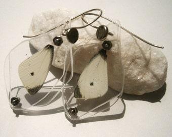 Black and White Butterfly Wing Specimen Earrings