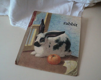 1930s Old Board Book Page of a Rabbit and a Goat. Saalfield 1938