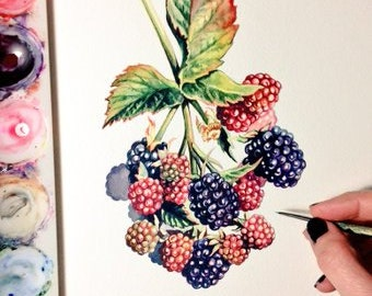 Original Blackberry painting - Original Watercolour - Botanical
