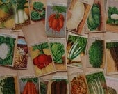 21 French VEGETABLE Seed Packets with Botanical Illustrations all different vintage lithographs for a collector or use in a rustic wedding
