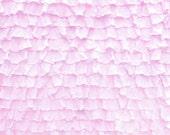 "Destash: Light Pink Xtra Ruffle 1"""