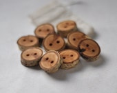 tree branch buttons •  birch wooden buttons  • birch wood button