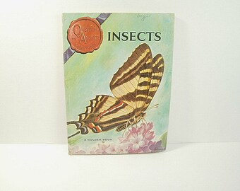 1965 Golden Book Insects Question and Answer Adventures by Alice Gray