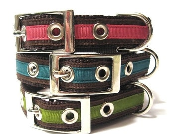 BIG SALE Custom Dog Collar w/ Metal Buckle- Chloe's Classic Bright Solids