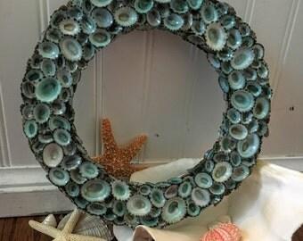 "Aqua Sea Blue Green Limpet Shell Wreath 22"" & 24""/ Holiday Decor/ Coastal Christmas/ Year Round Door Seashell Wall Decorations Wreaths SEA"