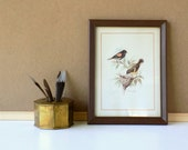 Paul Whitney Hunter Birds Lithograph Pencil and Watercolor Wash Print. Vintage American Art. Cottage Farmhouse Chic. Wall Decor. Housewares.