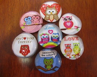OWL LOVE BIRD Magnets Glass Bubble Magnets Set of 7 Super Strong