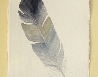 Original watercolour painting feather illustration from a series