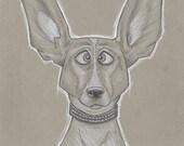 Dog Caricature Sketch