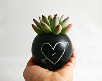 Sphere Pod Planter // Black Chalkboard