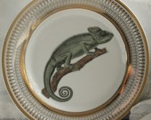 Chameleon Plate, Gold or Silver, Dinnerware Dish, China, Porcelain Formal Tableware, Foodsafe, Lizard Reptile, Payment Plans Available