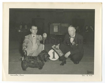 20th Century Dog Show - Vintage Silver Print 8x10 - Worcester, Ma - 1949