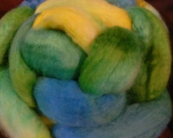4 oz.  Bluefaced Leicester (BFL) wool roving; On a Clear Day...