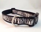 Black and White Zebra Print Dog Collar