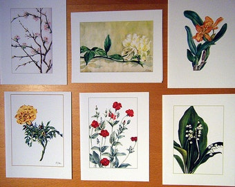 Assorted Flowers_B - Set of 6 blank cards