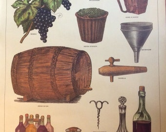 Vintage French School Poster by Deyrolle of Wine